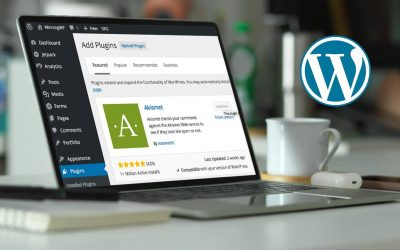 Must Have WordPress Plugins for Business Websites